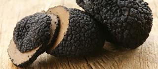 Truffle - Porcini - Morel